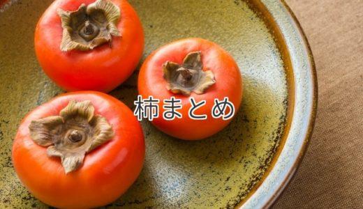 柿のまとめ|食べ頃、選び方、黒い斑点、腐る、栄養と効果、食べ過ぎ