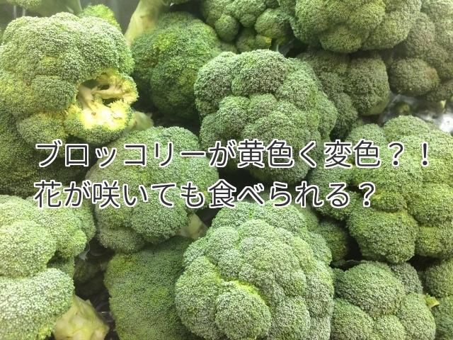 れる ブロッコリー 黄色 食べ