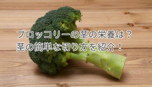 ブロッコリーの茎と芯の栄養はスゴイ効果!茎の簡単な切り方を紹介!