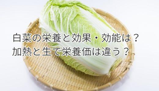 白菜の栄養はない?!効果・効能は加熱と生で違う野菜ってホント?!