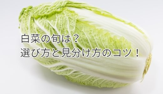 白菜の旬の季節は?美味しい白菜の選び方と断面の見分け方のコツ!