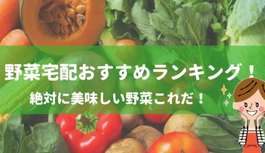 有機野菜宅配の比較ランキング!人気の無農薬野菜のお試しおすすめ!