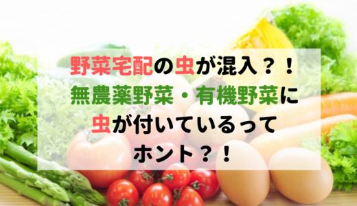 うわっ!野菜宅配の無農薬野菜・有機野菜に虫が付いているって本当?
