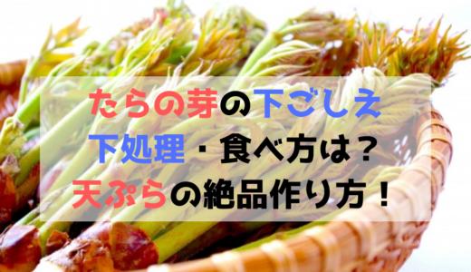 たらの芽の下ごしえ・下処理・食べ方は?天ぷらの絶品作り方!