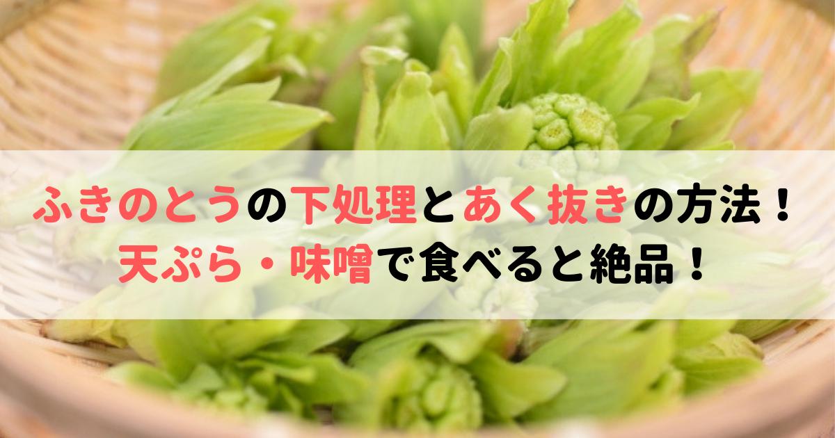 ふきのとう 天ぷら