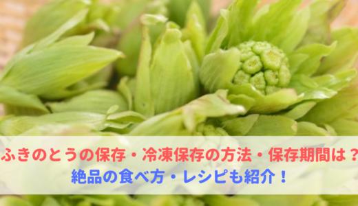 ふきのとうの保存・冷凍保存の方法・保存期間は?食べ方も紹介!