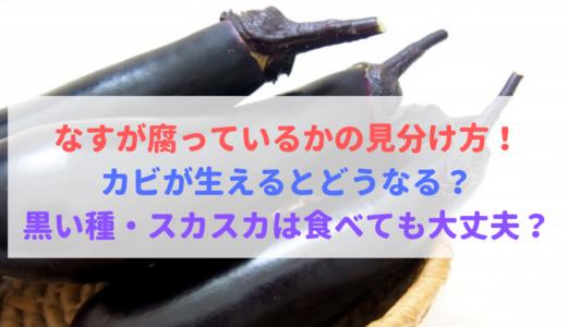 【必見】なすが腐る・カビが生えるとどうなる?黒い種・スカスカは食べる?