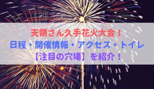 天領さん久手花火大会!日程・開催情報・アクセス・トイレ・穴場!2019年