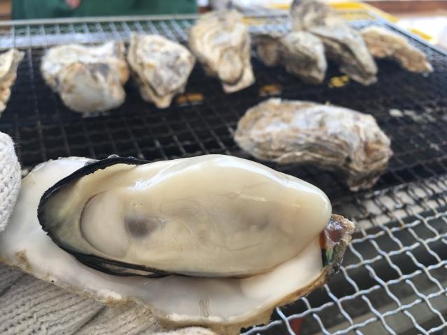牡蠣 食べ すぎ 牡蠣を食べ過ぎるとどうなる?影響や起こりうる症状を解説